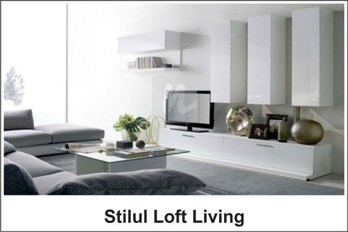 Stilul Loft Living