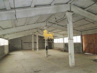 inchiriere de la agentie imobiliara, Spatiu industrial cu 3 incaperi, in zona Periferie, orasul Sebes