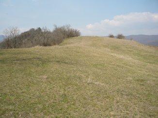 1400 mp teren agricol de vanzare, in Alba Paclisa