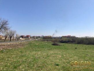 vanzare teren intravilan de la agentie imobiliara cu suprafata de 8000 mp, comuna Zadareni