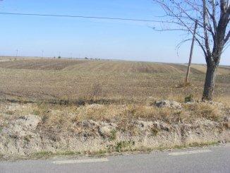 proprietar vand Teren agricol in suprafata de 40000 metri patrati, comuna Popesti