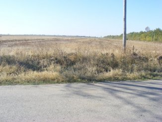 40000 mp teren agricol de vanzare, in  Arges Popesti