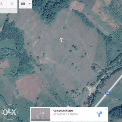 150000 mp teren agricol de vanzare, in Arges Mihaesti