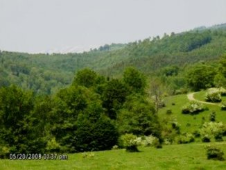 91667 mp teren intravilan de vanzare, Valea Mare Pravat Arges
