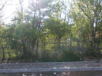 vanzare teren intravilan de la agentie imobiliara cu suprafata de 1000 mp, in zona Nord-Vest, orasul Campulung-Muscel