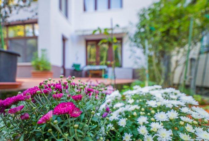 Centru Brasov casa cu 5 camere, 2 grupuri sanitare, cu suprafata utila de 200 mp, suprafata teren 340 mp si deschidere de 16 metri. In orasul Brasov Centru.