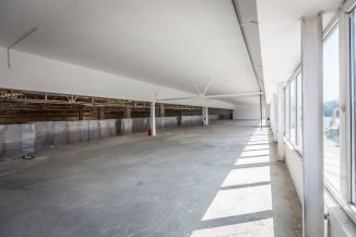 vanzare Spatiu industrial 6900 mp, 1 grup sanitar, zona Tractorul, orasul Brasov