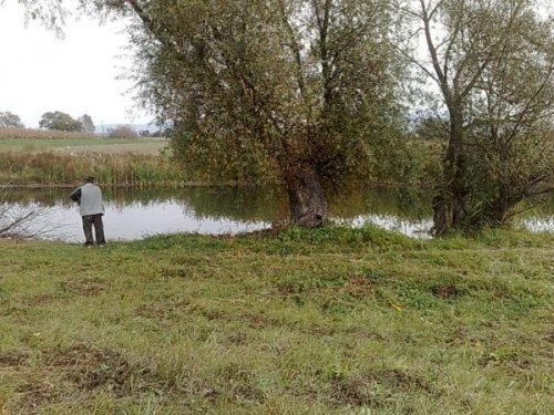 de vanzare teren extravilan in suprafata de 2000 mp si deschidere de 18 metri. In orasul Brasov, zona Exterior Est. Clasa fertilitate: I.