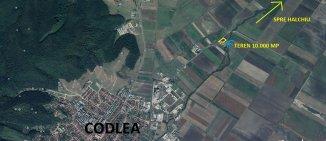 vanzare teren extravilan agricol de la agentie imobiliara cu suprafata de 10000 mp, in zona Nord-Est, orasul Codlea
