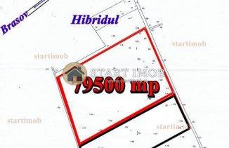 vanzare 79500 metri patrati teren agricol extravilan, comuna Harman