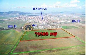 vanzare teren extravilan agricol de la agentie imobiliara cu suprafata de 79500 mp, comuna Harman