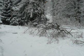1100 mp teren intravilan de vanzare, in zona Valea Rasnoavei, Predeal Brasov