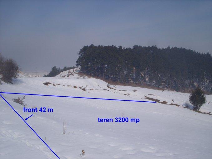 de vanzare teren intravilan cu suprafata de 3200 mp si deschidere de 42 metri. In orasul Sacele, zona Turches. Utilitati: Gaze, Curent electric 220V, Apa.