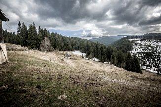vanzare 22500 metri patrati teren intravilan, localitatea Fundatica