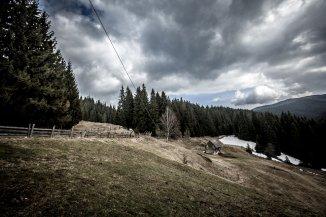 vanzare teren intravilan de la agentie imobiliara cu suprafata de 22500 mp, localitatea Fundatica