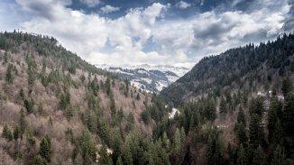 vanzare 23000 metri patrati teren intravilan, localitatea Moieciu de Sus