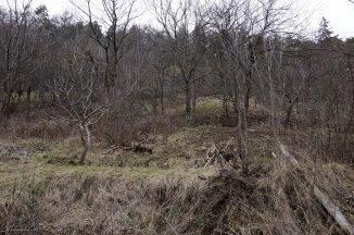 agentie imobiliara vand teren intravilan in suprafata de 1300 metri patrati, amplasat in zona Schei, orasul Brasov
