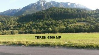 vanzare teren intravilan de la agentie imobiliara cu suprafata de 6500 mp, orasul Zarnesti