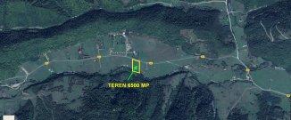 agentie imobiliara vand teren intravilan in suprafata de 6500 metri patrati, orasul Zarnesti