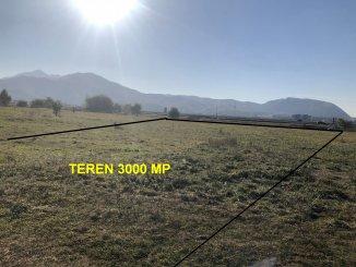 vanzare 3000 metri patrati teren intravilan, zona Exterior Nord, orasul Sacele