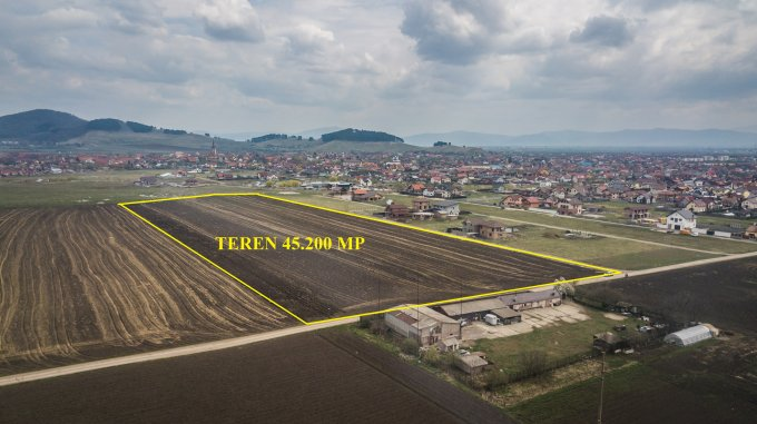Teren intravilan de vanzare direct de la agentie imobiliara, in Sanpetru, cu 1.130.000 euro. Suprafata de teren 45200 metri patrati cu deschidere de 130 metri.
