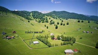 3000 mp teren intravilan de vanzare, Sirnea  Brasov