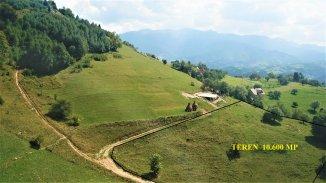 vanzare teren intravilan de la agentie imobiliara cu suprafata de 10600 mp, localitatea Magura