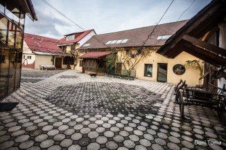 vanzare vila cu 1 etaj, 12 camere, comuna Cristian, suprafata utila 660 mp