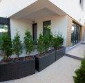 vanzare apartament cu 3 camere, decomandat, in zona Aviatiei, orasul Bucuresti
