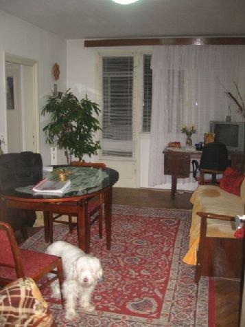 vanzare apartament cu 3 camere, semidecomandat-circular, in zona Giurgiului, orasul Bucuresti