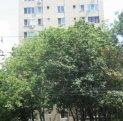 vanzare apartament cu 3 camere, decomandat, in zona Metalurgiei, orasul Bucuresti