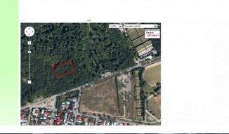 Bucuresti padure de Foioase 0.25 hectare la pretul de 35 euro negociabil