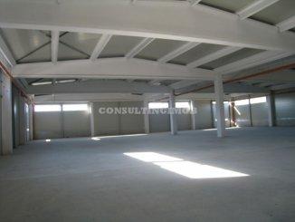 vanzare Spatiu industrial 12400 mp, 1 grup sanitar, zona Vest, orasul Bucuresti