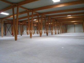 inchiriere de la agentie imobiliara, Spatiu industrial, in zona Centura Vest, orasul Bucuresti