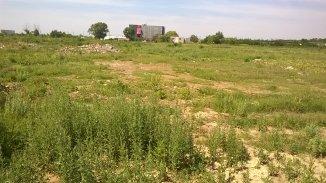 vanzare 7250 metri patrati teren intravilan, zona Prelungirea Ghencea, orasul Bucuresti