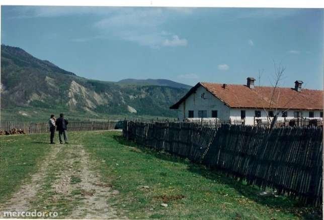 Ferma de vanzare direct de la proprietar, in Cislau, cu 150.000 euro. Suprafata de teren 25000 metri patrati cu deschidere de 50 metri, suprafata utila 1300 mp. Destinatie: Ferma.