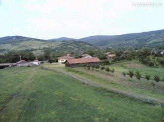 vanzare ferma de animale cu teren 25000 metri patrati, comuna Cislau, suprafata utila 1300 mp