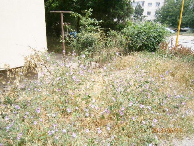 vanzare apartament decomandat, zona ICIL, orasul Constanta, suprafata utila 68 mp