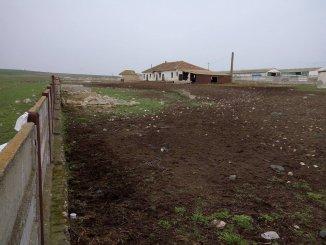 Ferma de vanzare cu 1 mp teren, in zona Zona Industriala, Constanta