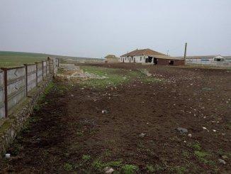 vanzare ferma de la proprietar cu 8230 mp teren, orasul Constanta