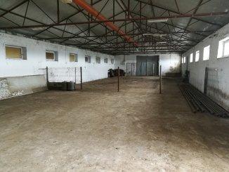 vanzare ferma de la proprietar cu 6508 mp teren, comuna Sacele
