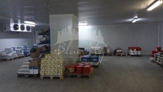 inchiriere Spatiu industrial 662 mp, 1 grup sanitar, zona Industriala, orasul Constanta