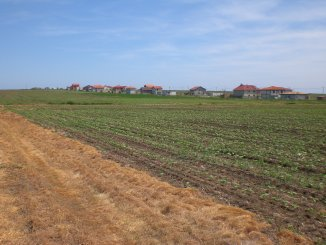 agentie imobiliara vand Teren agricol in suprafata de 800 metri patrati, comuna Vama Veche