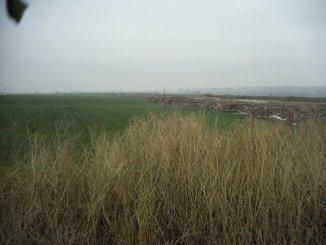 vanzare 9000 metri patrati teren agricol extravilan, orasul Constanta, zona Varianta Ovidiu