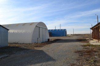 agentie imobiliara vand Teren agricol in suprafata de 35000 metri patrati, orasul Murfatlar Basarabi