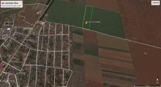 agentie imobiliara vand Teren agricol in suprafata de 40000 metri patrati, comuna 23 August