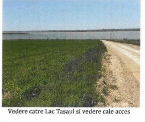vanzare teren extravilan agricol de la proprietar cu suprafata de 5000 mp, in zona Periferie, orasul Constanta