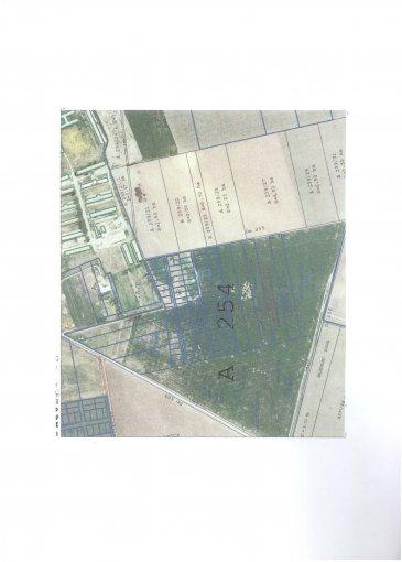 Sud Teren intravilan vanzare 485 mp, deschidere 14.97 metri. Pret: 3.500 euro negociabil. agentie imobiliara vand teren intravilan Destinatie: Rezidenta, Vacanta.