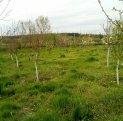 3489 mp teren intravilan de vanzare, Constanta