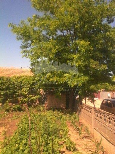 de vanzare teren intravilan cu suprafata de 770 mp si deschidere de 31 metri. In orasul Constanta, zona Palazu Mare.